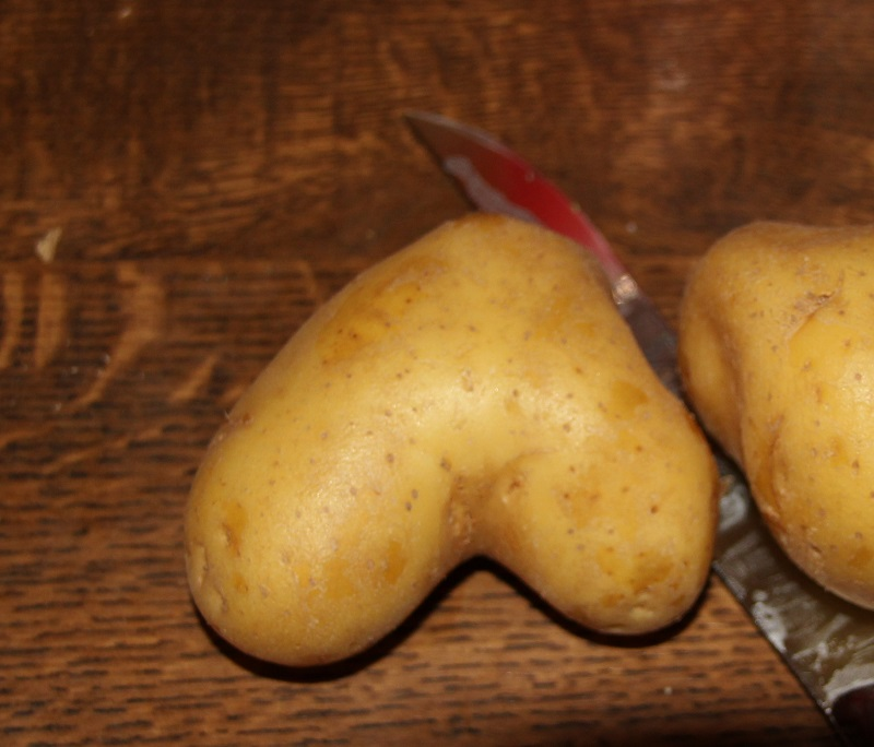 Unförmige-Kartoffel